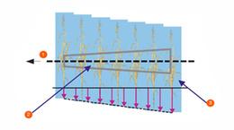 Схема зрізу
