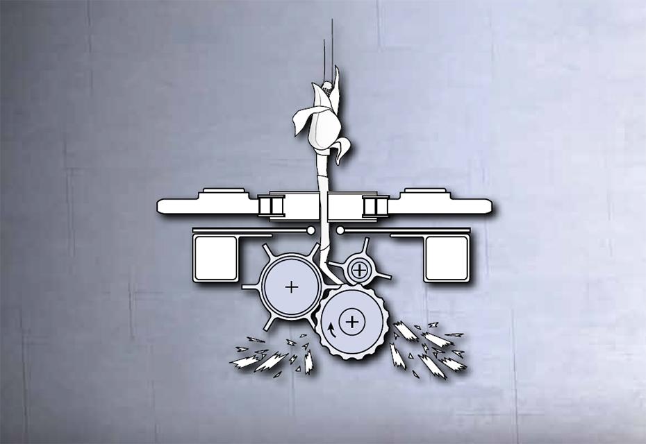 Жатка Geringhoff Rota Disc® | Horizon Star® II